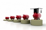 group of pigs saving money for college